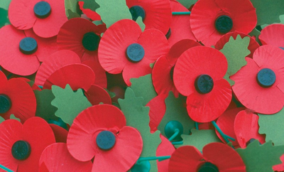 Poopy image (A group of lapel poppies) (Picture courtesy of The Royal British Legion)